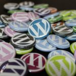 Wordpress – spletne strani za profije in amaterje